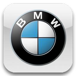 ... → Ремонт легковых автомобилей → BMW ETM